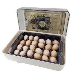 Fertile egg hatching service
